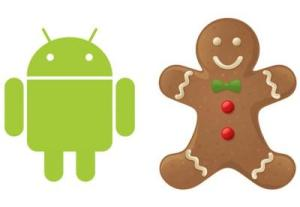 Android Robot and Gingerbread